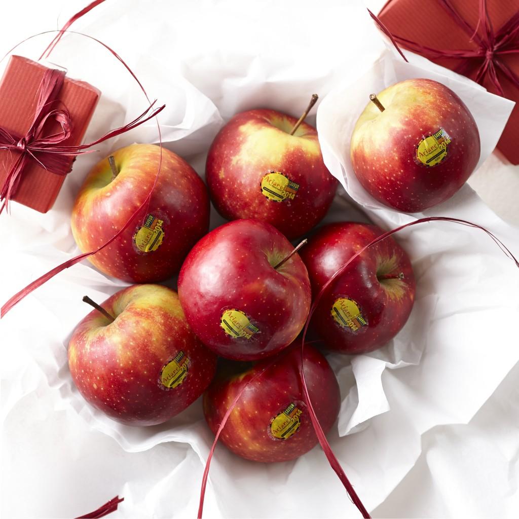 ariane pomme noel