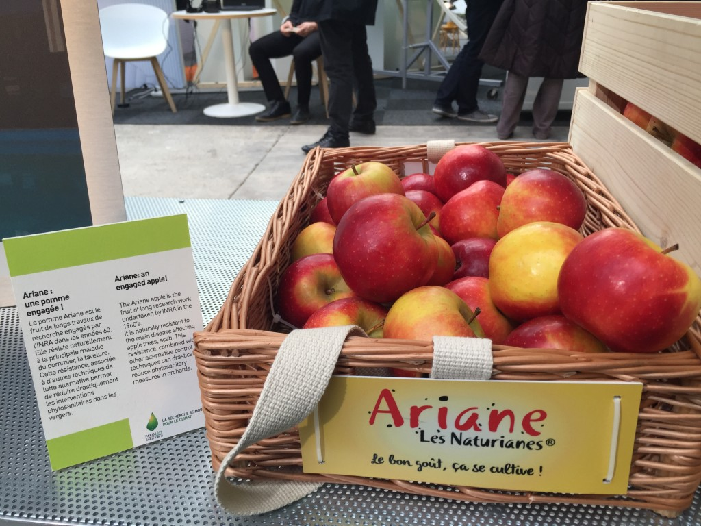 Ariane, partenaire de la COP 21 en tant que représentante du mieux produire