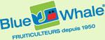 bluewhale_logo