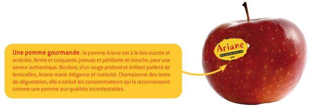 """Résultat de recherche d'images pour """"pommes ariane"""""""
